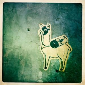 hong kong graffiti - cao ni ma