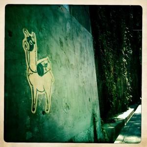 hong kong graffiti - llama